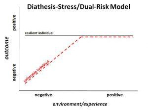 Diathesis Stress Diagram