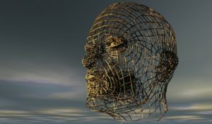 Wire-frame of human skull